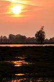 Заход солнца над озером в национальном парке в Германии Стоковые Фотографии RF