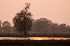 Заход солнца над озером в национальном парке в Германии Стоковая Фотография RF