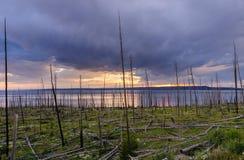 Заход солнца над озером Йеллоустоном Стоковое фото RF