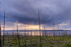 Заход солнца над озером Йеллоустоном Стоковые Фотографии RF