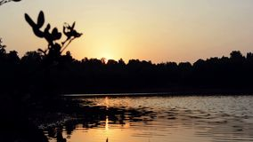 Заход солнца над озером видеоматериал