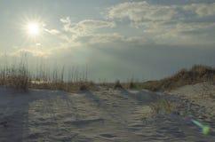 Заход солнца над песчанной дюной на пляже на ландшафте лета вечера стоковое изображение rf