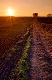 Заход солнца над сельскохозяйственнем угодье Стоковые Фото