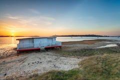 Залив Буша ежевичника в Дорсете стоковые изображения