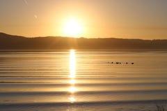 Заход солнца над фьордом Вайле, Данией стоковые изображения rf