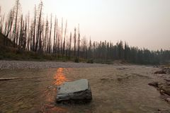 Заход солнца над южной вилкой Flathead реки на ущелье в комплексе глуши Bob Marshall - Монтане США заводи луга Стоковые Изображения RF