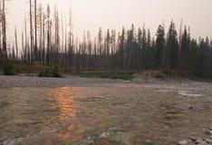 Заход солнца над южной вилкой Flathead реки на ущелье в комплексе глуши Bob Marshall - Монтане США заводи луга Стоковое фото RF