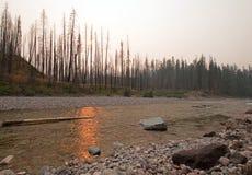 Заход солнца над южной вилкой Flathead реки на ущелье в комплексе глуши Bob Marshall - Монтане США заводи луга Стоковое Изображение RF