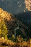 Заход солнца над deodar деревом в Гималаях - красивой Curvy дорогой в горах стоковые фото