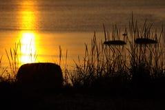заход солнца настроения Стоковое Изображение