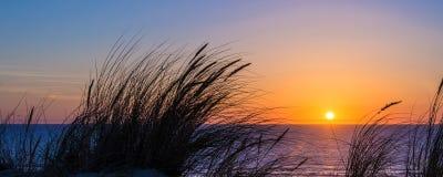 Заход солнца на Атлантическом океане, силуэте травы пляжа в Lacanau Франции Стоковое Изображение