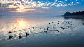 Заход солнца на дистантном крае озера Стоковые Фотографии RF