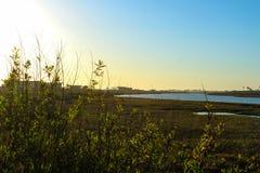 Заход солнца на заболоченных местах chica bolsa Стоковые Фото