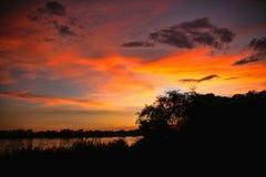 Заход солнца на Замбези, Замбии стоковые изображения rf