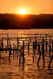 Заход солнца на малом озере Стоковое фото RF