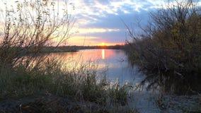 Заход солнца на небольшом озере в вечере осени видеоматериал
