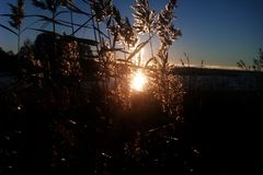Заход солнца на озере Seliger стоковое изображение rf