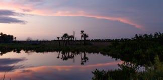 Заход солнца на охраняемой природной территории острова Меррита национальной, Флориде стоковые изображения rf