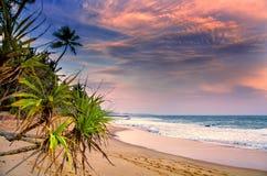 Заход солнца на пляже Шри-Ланке Стоковое Изображение RF