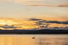 Заход солнца на побережье Puerto Natales стоковые фото