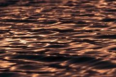 Заход солнца на поверхности воды стоковые изображения rf