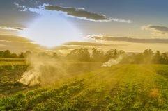 Заход солнца на поле Стоковое Изображение
