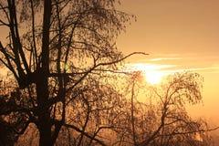Заход солнца на прекрасном вечере зимы стоковые изображения rf