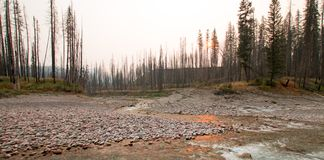 Заход солнца на стечении реки южной вилки Flathead и потерянной заводи Джека на ущелье заводи луга в глуши Bob Marshall - Монтане Стоковое Изображение