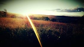 Заход солнца на Baskett Слау стоковое фото rf