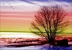 заход солнца необыкновенный Стоковая Фотография RF