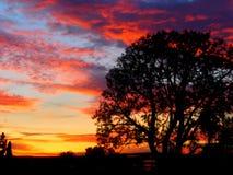 Заход солнца ночей зим Стоковая Фотография RF