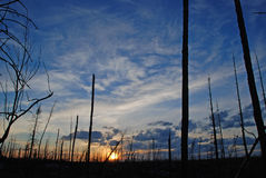 заход солнца ожога Стоковая Фотография