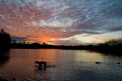 заход солнца озер Стоковая Фотография