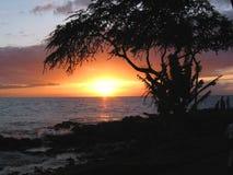 заход солнца океана Стоковые Фото