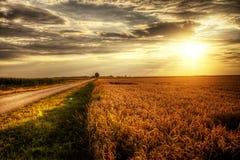 Заход солнца осени Стоковая Фотография RF