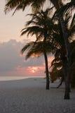 заход солнца острова Стоковые Изображения