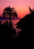 заход солнца острова elba стоковые фото