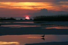заход солнца отражений Стоковые Фотографии RF