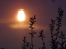 заход солнца отражения Стоковое фото RF