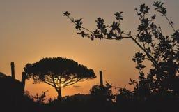Заход солнца от холма полуострова Сорренто стоковое изображение rf
