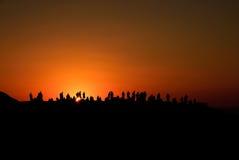заход солнца охотников Стоковая Фотография