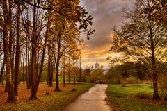 заход солнца парка осени Стоковое фото RF