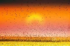 заход солнца печати съемки земли штрафа птицы искусства Стоковая Фотография RF