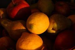заход солнца плодоовощей светлый Стоковое Фото
