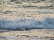 Заход солнца пляжа небо захода солнца с завальцовкой волны Стоковые Фотографии RF
