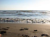Заход солнца пляжа небо захода солнца с завальцовкой волны Стоковое Изображение RF