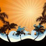 заход солнца пляжа иллюстрация вектора