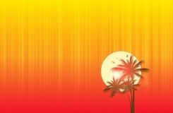 заход солнца пляжа бесплатная иллюстрация