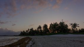 Заход солнца пляжа Punta Cana акции видеоматериалы