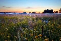 заход солнца поля Стоковая Фотография RF